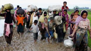 Um grupo de rohingyas foge da violência no estado de Rakhine