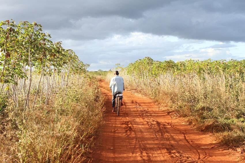 Camponeses e moçambicanos duma maneira geral sofrem com o impacto ambiental na implementação de projectos agrícolas.