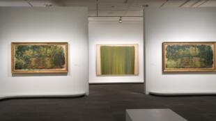نمایشگاه آبسترههای هنرمندان آمریکایی از نیلوفرهای آبی مونه