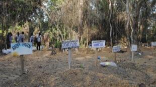 Cementerio de víctimas del virus de Ébola, en Suakoko, Liberia.