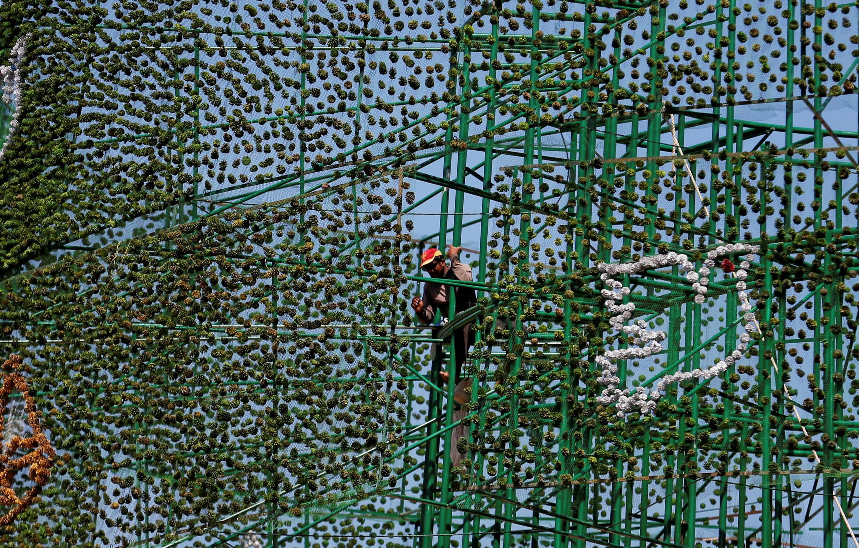 Установка огромной искусственной ели в столице Шри-Ланки Коломбо, 5 декабря 2016 г.