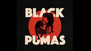Black Pumas (Capture d'écran).