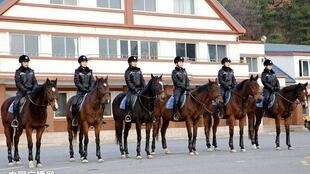 大连女骑警。