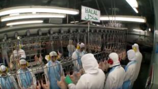 O Brasil é o maior exportador de carne bovina e de frango para o mundo islâmico.
