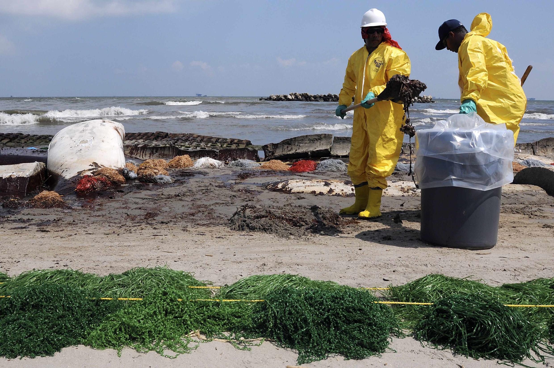 Рабочие, нанятые British Petroleum, участвуют в операции по очистке побережья в Луизиане.