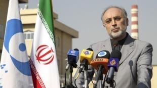 Ali Akbar Salehi dirige l'Organisation atomique iranienne, le 5 décembre 2010.