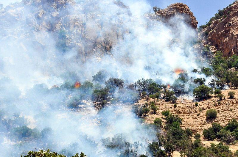 آتشسوزی در جنگلهای زاگرس