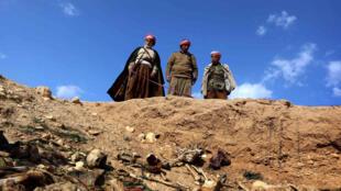 Des membres de la communauté yézidie à la recherche d'indices d'un massacre dans le district de Sinjar, le 3 février 2015.