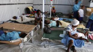 L'épidémie de choléra en Haïti a fait plus de 8 300 morts et des centaines de miliers de personnes infectées (photo prise à Port-au-Prince en décembre 2010)