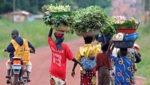 Le nord-ouest de la Centrafrique est confronté à l'apparition de tensions interreligieuses jusque là inédites.
