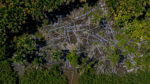 Vue aérienne de la déforestation dans la municipalité de Melgaço au Brésil, le 30 juillet 2020.