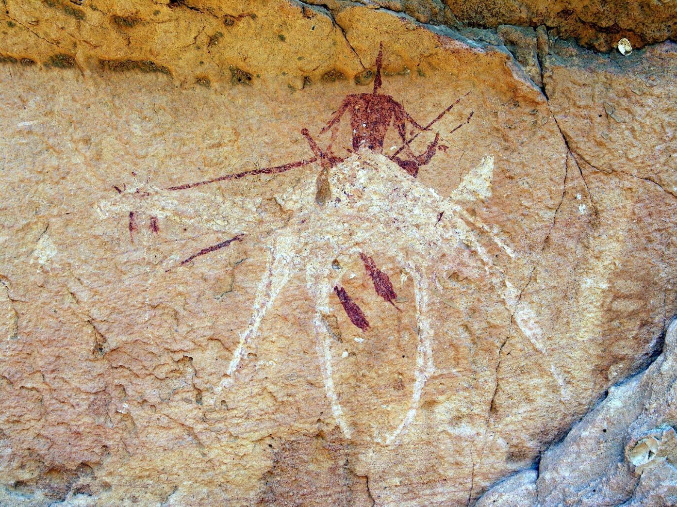 Peintures du massif de l'Ennedi. Plusieurs Tchadiens appellent le département de la Culture à s'occuper d'autres sites historiques qui sont menacés de disparition.