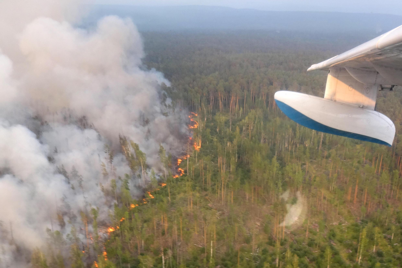 Лесные пожары в России, 30 июля 2019