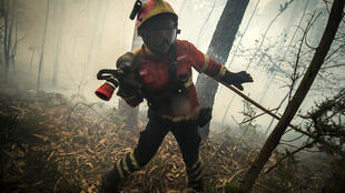 Bombeiro combate incêndio florestal em Bustelo, norte de Portugal.