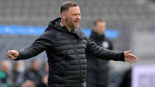 Hertha Berlin coach Pal Dardai is one of a trio at the club who have tested positive for Covid-19