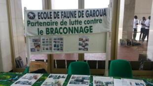 L'école de faune de Garoua au Cameroun participe à la luttre contre le braconnage dans le pays.