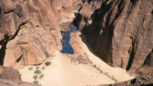 Des chameaux dans le massif de l'Ennedi, au Tchad.