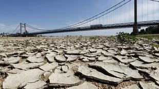The Loire riverbed near the Anjou-Bretagne bridge in Ancenis in May this year
