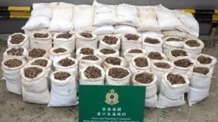 Les écailles et ingrédients issus du pangolin sont couramment utilisés par la médecine traditionnelle chinoise et vendus au marché noir.