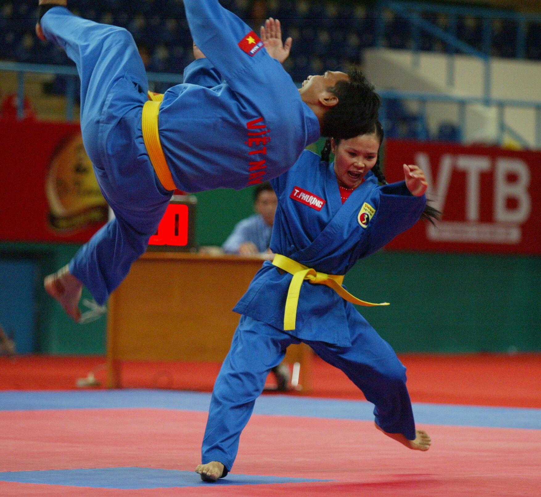 Biểu diễn Vovinam, một trong những môn phái võ của người Việt sáng tạo, tại đại hội võ thuật quốc tế ở thành phố Hồ Chí Minh 2013.