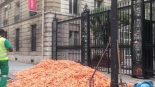 Vendedores de cigarro protestaram contra nova lei despejando cenouras em frente à sede do partido socialista.