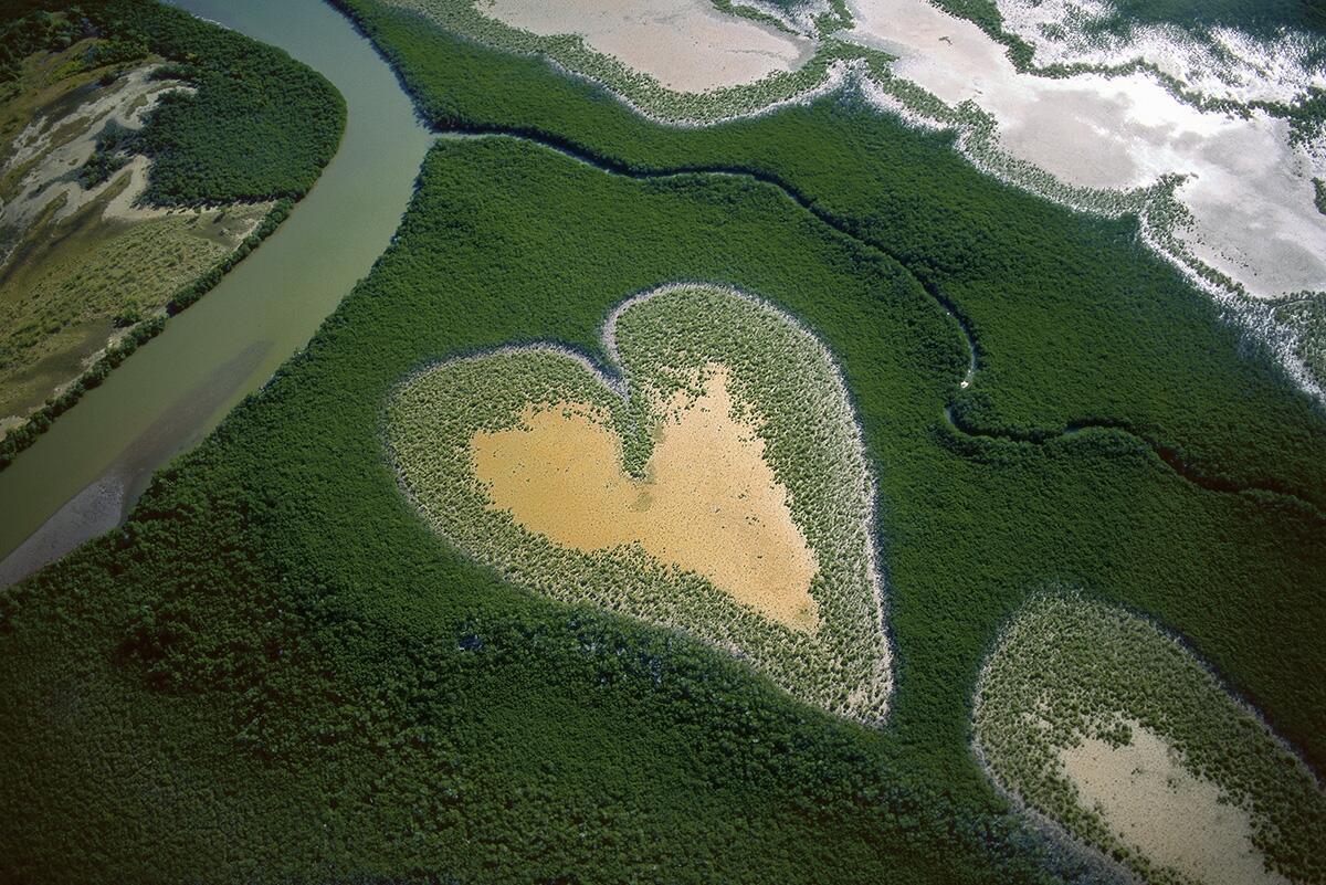 Corazón de Voh en 1990, Nueva Caledonia (20°56' S – 164°39' E)