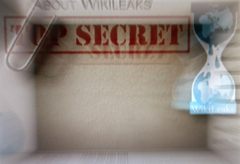 WikiLeaks traite notamment de la question de la corruption au sein du pouvoir nigérian.