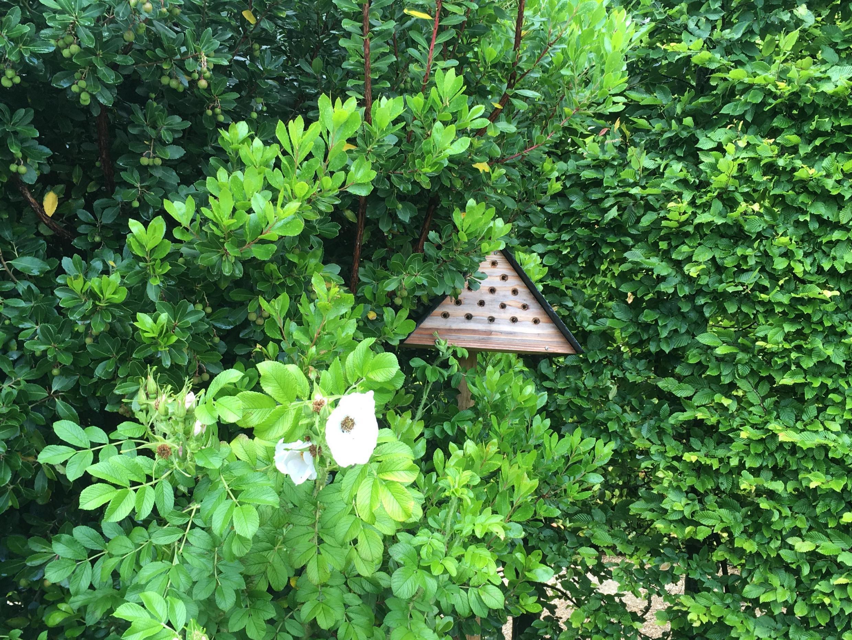 Домики для насекомых в парке замка Амбуаз