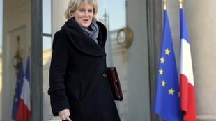 Nadine Morano leaves a cabinet meeting in 2012