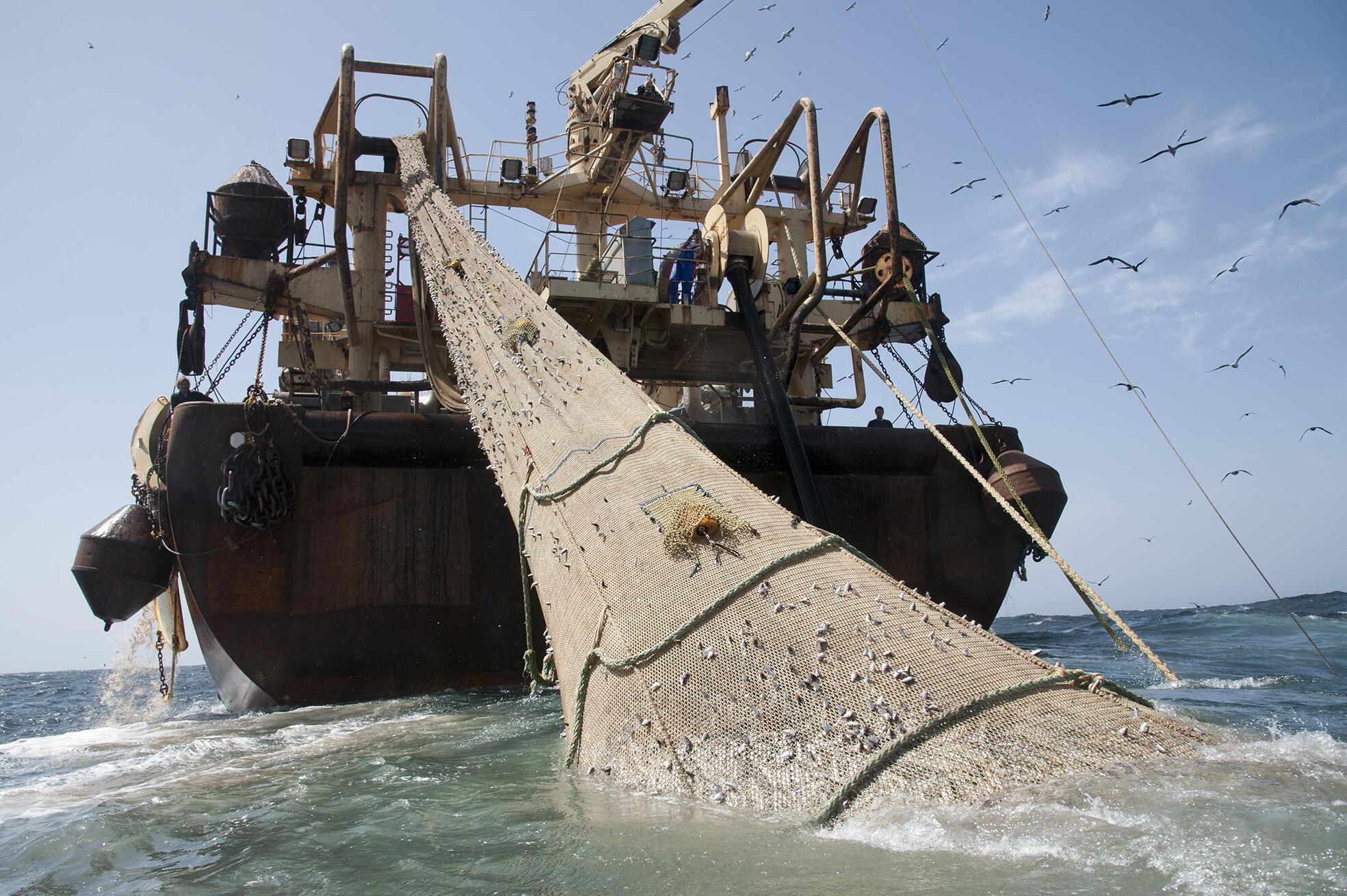 Le Helen Mary, battant pavillon allemand, ici au large des côtes mauritaniennes en 2012, est l'un des 20 «bateaux monstres» recensés par Greenpeace.