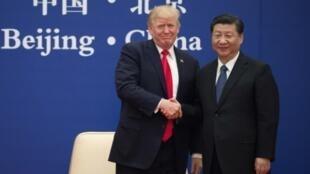 Los presidentes de EEUU, Donald Trump (izq), y China, Xi Jinping, se estrechan la mano durante una reunión con empresarios el 8 de noviembre de 2017 en Pekín