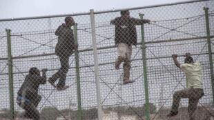 Des migrants tentent le passage dans l'enclave espagnole de Melilla, en territoire marocain, en 2014.