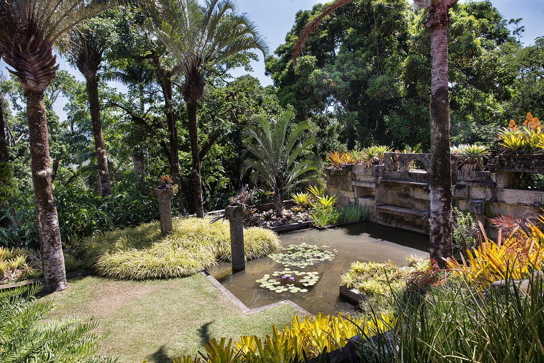 O acervo botânico-paisagístico de mais de 400 mil m² abriga uma diversidade de cerca de 3,5 mil espécies de plantas.