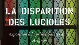 Affiche de l'exposition « La Disparition des Lucioles ».
