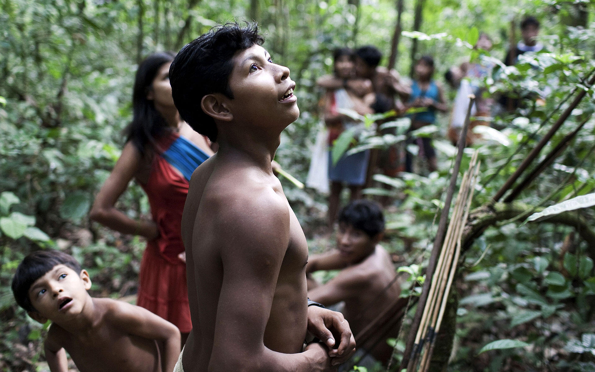 Dezenas de índios awás se escondem na floresta para evitar confrontos com madeireiros.