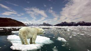 Fonte des glaces en Arctique.