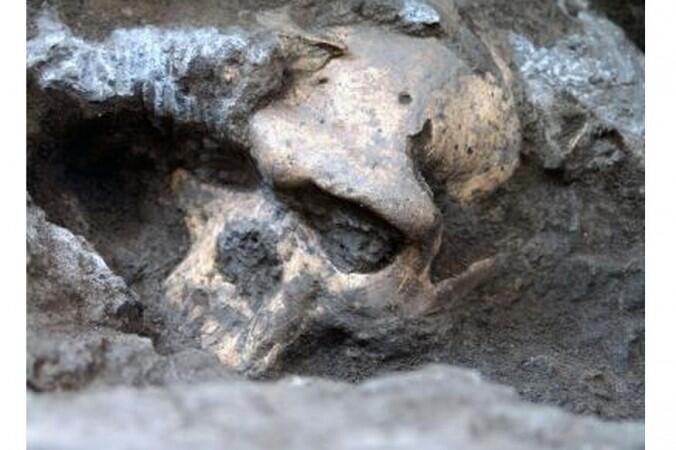 Cráneo humano viejo de 1.8 millones de años, hallado en Dmanisi, Georgia.