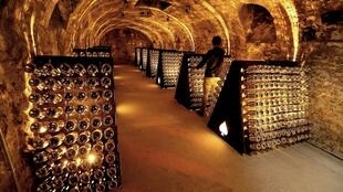 Champagne houses are pushing for smaller harvests this year, saying their cellars are already overstocked as the COVID-19 crisis crimps sales.
