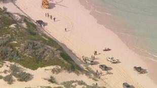 Le requin n'a laissé aucune chance au surfeur dont le corps a été coupé en deux, samedi 14 juillet, au large de Perth.