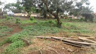 Le cimetière de Yimbaya l'un des sites présumés d'enfouissement clandestin après le massacre du 28 septembre 2009.