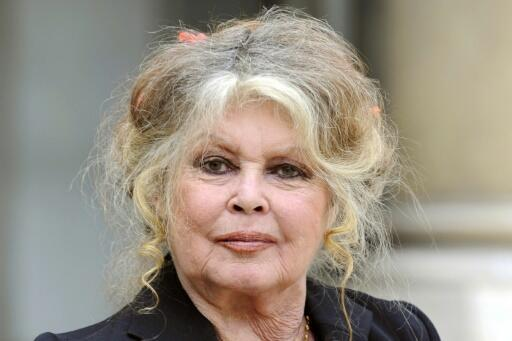 Brigitte Bardot retired from the cinema in 1973 at age 39 to devote herself to animal rights