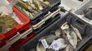 Arrivage du poisson au marché à la criée de Saint-Gilles-Croix-de-Vie, sur la côte Atlantique française, le 4 mai 2016.