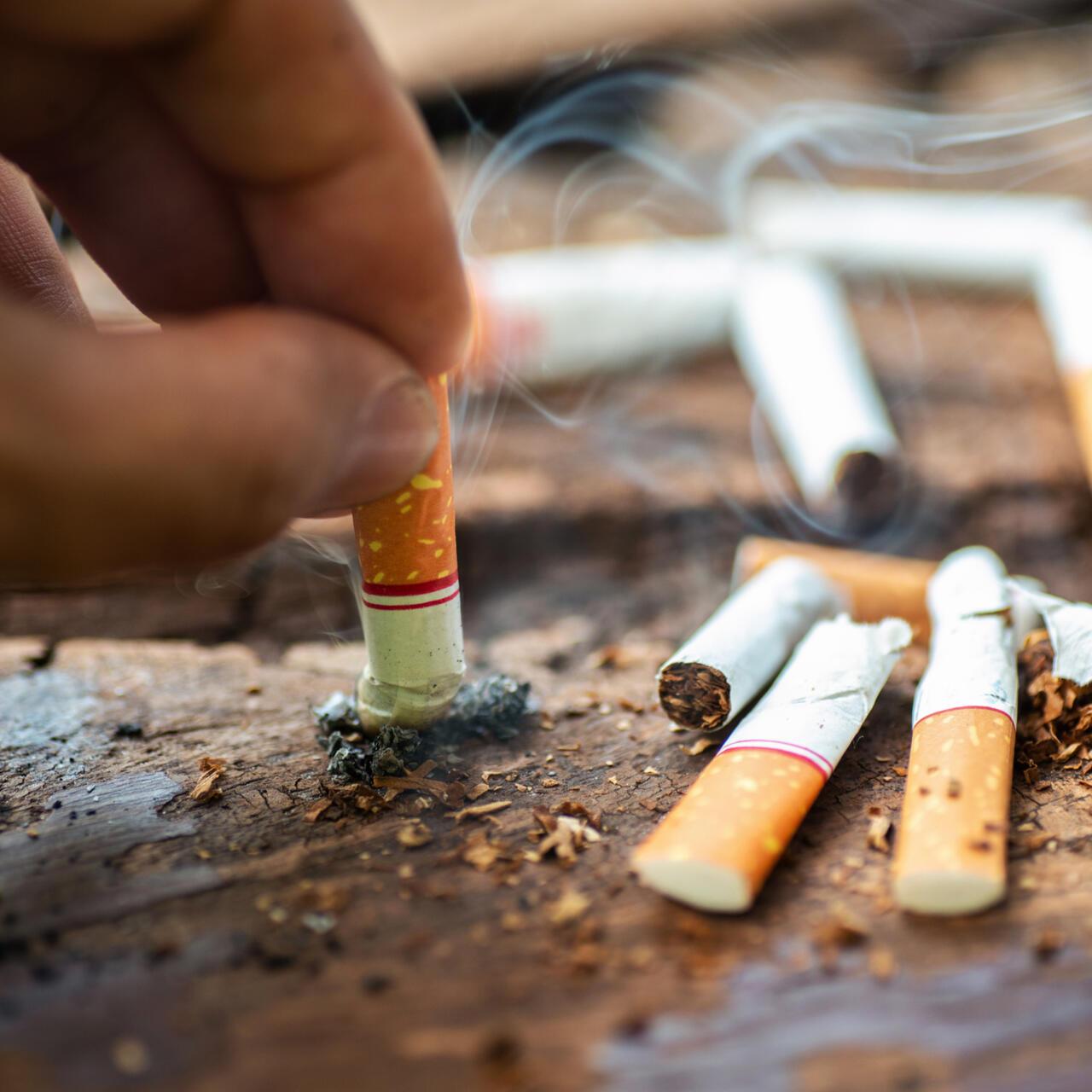 Табачные изделия цены от производителя купить наполнитель сигарет