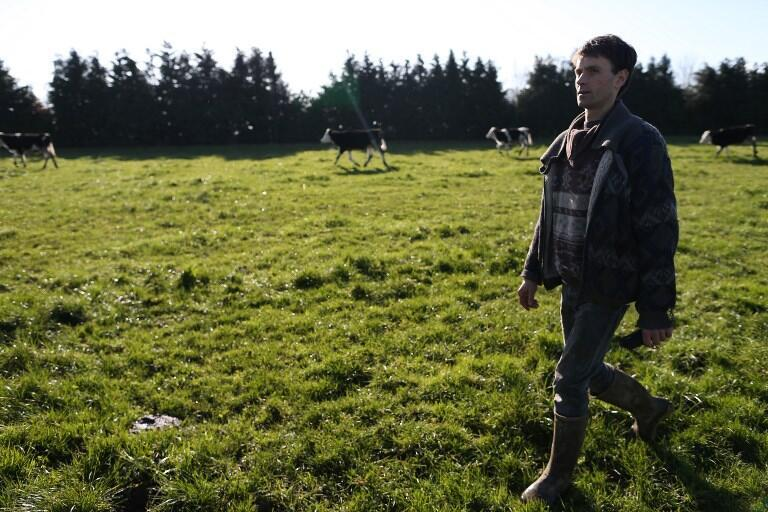 Un agriculteur du nord-ouest de la France a choisi de produire biologique.