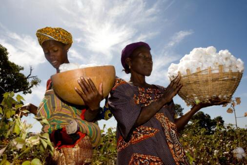 L'agriculture représente 40% du produit intérieur brut du Mali.