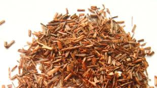 Du rooibos, parfois appelé «buisson rouge». L'infusion de rooibos peut être bue chaude ou froide, avec ou sans lait.