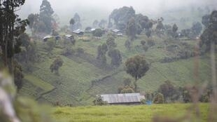 Nord-Kivu en RDC, territoire de Masisi. (Photo d'illustration)