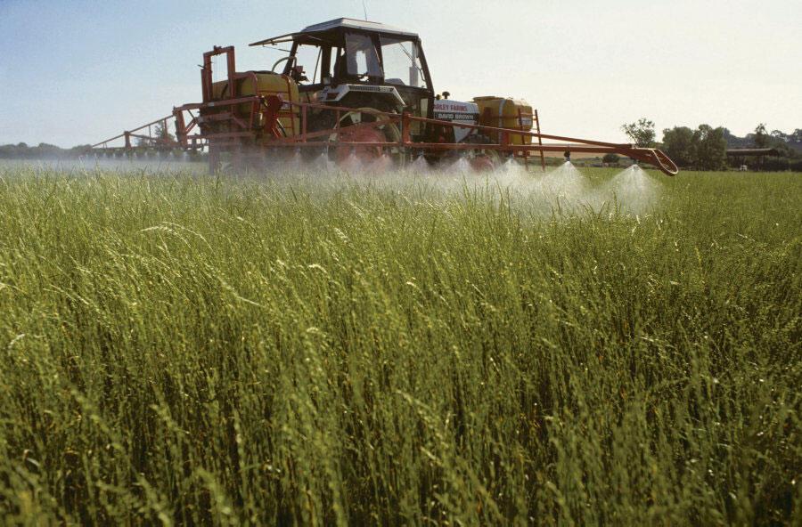 Glifosafo, da Monsanto, é o herbicida mais usado do mundo.