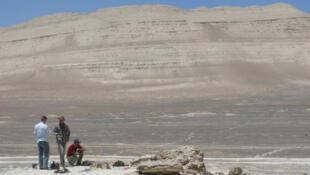 Le site de Cerro Colorado, dans le désert côtier du sud du Pérou, et les restes du nouveau cachalot fossile, lors de sa découverte en 2008.