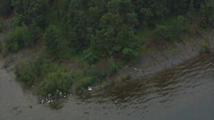 Люди, пытающиеся бежать с острова Утойя после стрельбы 22 июля 2011 г.